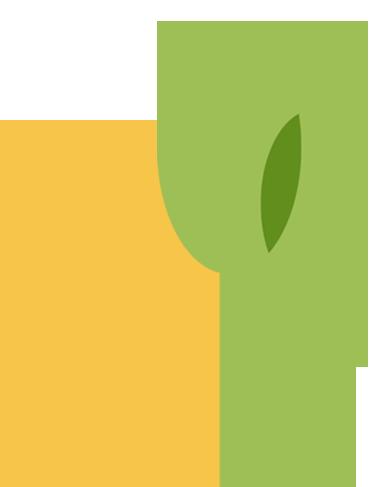 imagen de la casa amarilla